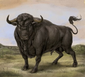 cropped-final-bull-no-crown