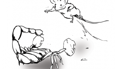 mouse vs scorpion