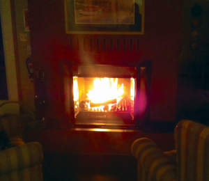 A roaring fire and a cozy chair  help kick reading break off right.