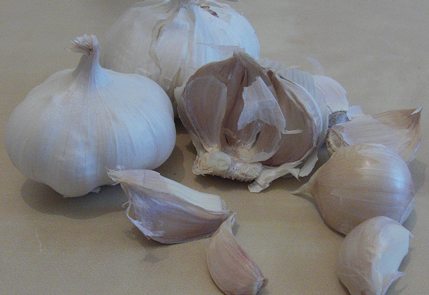 Garlic has been found to be a useful vegetable in the fight against brain cancer. (Image:  Richard North/ flickr)