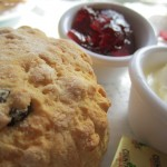Black currant scones with lemon cream
