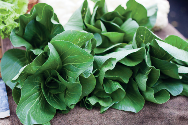 So you have bok choy in your kitchen. Now what? (Image: Tim Sackton/Flickr)