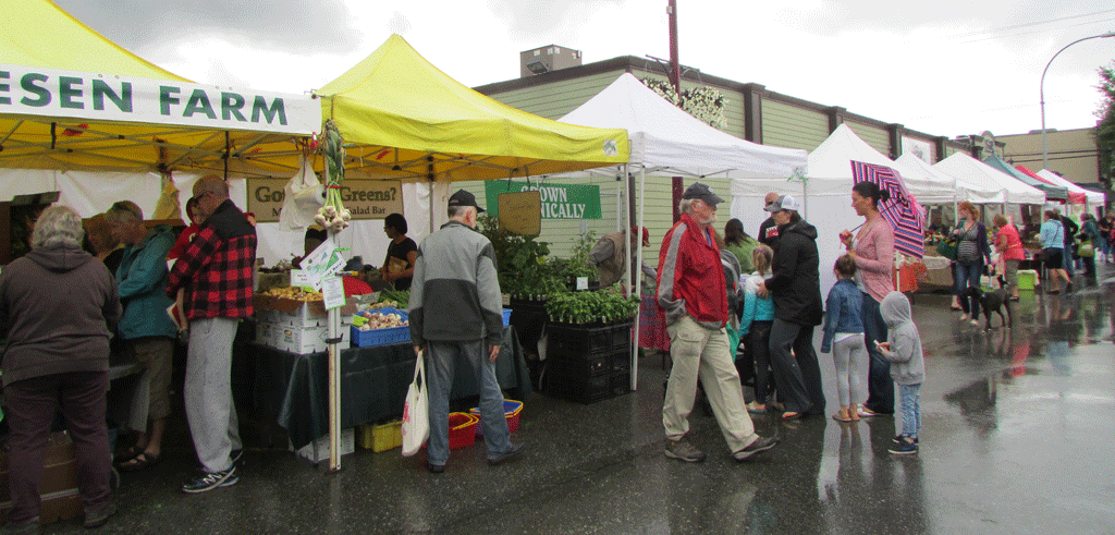 The Saturday market was bustling on June 28 despite the spontaneous morning downpour. (Images: Katie Stobbart)
