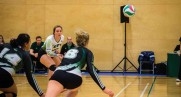 Volleyball teams dominate against top competition