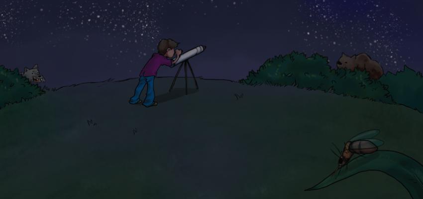 The stargazer's survival guide